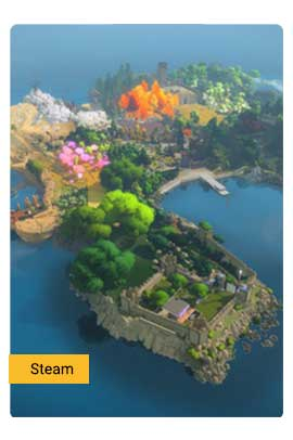 The Witness - Steam